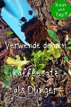 Coffee grounds as fertilizer - don& throw it away! - House and bed - Coffee grounds as fertilizer. Instead of composting your coffee grounds or even throwing them into -