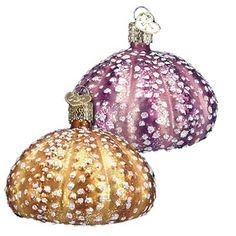 "Sea Urchin Christmas Ornament 12254 Merck Family's Old World Christmas Ornament measures approximately 2 1/4"", made of mouth blown, hand painted glass. Choose from golden or purplish"