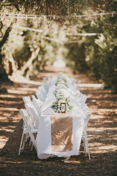 Family Style Reception in the Olive Grove at Highland Springs Resort.  Photo By Brett & Tori Photographers