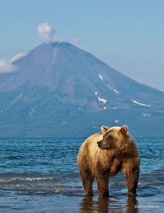 Kamtchatka, Russia. Minus the bear, please.