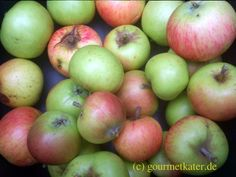 Gourmetkaters Marktplatz: Beginn meiner Apfel-Ernte #harvest #apple #fruits #food