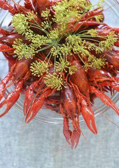Kräftskiva, Swedish Crayfish Party | Menu and Ideas at Outside Oslo
