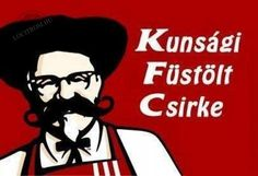 a magyar kfc Funny Images, Funny Pictures, Best Memes Ever, W Two Worlds, Bad Memes, History Memes, Grumpy Cat, Funny People, Funny Cute