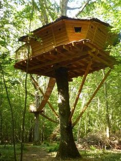 Nice Tree Houses the 10 most beautiful towns in the philippines | baguio, tree