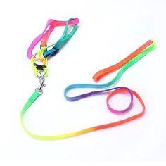 Colorful Harness Leash Description: material: nylon size: 120cm length1cm width suitable for small dogs  Order via WhatsApp 087896532077 & LINE @wec7207p (pake @) #puppies #onlinepetshop #petshop #makanananjing #puppy #sofa #pawbulous #petshopindo #petshopjambi #petbed #dogfood #indodog #mainananjing #doglover #cute #anjinglucu #hamster #catbed #dogbed #aksesorisanjing #aksesoriskucing #talianjing #dogshirt #bajuanjing #dogclothing #tasanjing #pinchcollar #collar #topianjing #dogtoy by…