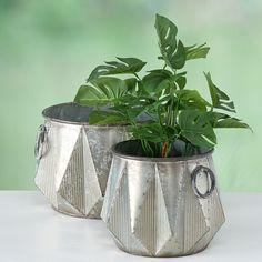 Set 2 ghivece Sito H20-22cm Planter Pots, Vase, Ideas, Home Decor, Elegant, Toulon, Decoration Home, Room Decor, Vases