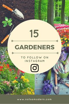 Instagram is a great place to find gardening inspiration. I've picked 15 of my favorite gardeners on Instagram that you should be following for gardening design ideas. #gardening #growsomethinggreen