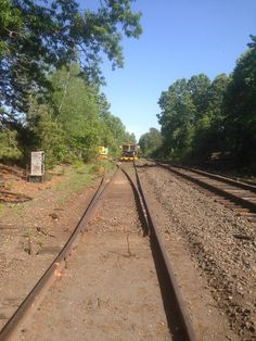 Track work at Medfield Junction. The track splitting off to the left is bay colony's former Newton branch. To the right is the CSX main line. W. Mill St would be in the distance straight ahead. Photo by Steve Hurley. May 30, 2016.