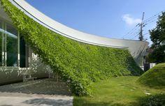modernes haus mit Gartenmauer aus Kletterpflanzen von Hideo Kumaki Architect