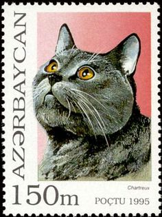 Azerbaijan CAT Stamp Azerbaijan officially the Republic of Azerbaijan, is a country in the Caucasus region, situated at the crossroads of Eastern Europe and Western Asia. It is bounded by the Caspian Sea to the east, Russia to the north, Georgia to the northwest, Armenia to the west and Iran to the south.