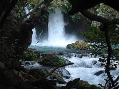 Israel -  Hermon River nature reserve in the Golan   Banias spring and waterfall – Banias Nature Reserve