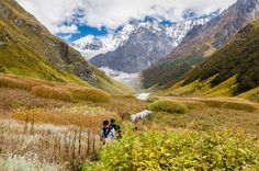 A heavenly pilgrimage in the Himalayas to the Valley of Flowers National Park in Northern India. A remarkable part of our beautiful planet. Best Tourist Destinations, Tourist Places, Best Places To Travel, Cool Places To Visit, Places To Go, Valley Of Flowers, Plan My Trip, India Travel, Pilgrimage