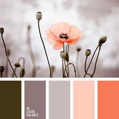 Color Palette No. little girls room colors Colour Pallette, Colour Schemes, Color Combos, Good Color Combinations, Coral Color Palettes, Color Schemes For Bedrooms, Room Color Ideas Bedroom, Warm Bedroom Colors, Paint Palettes