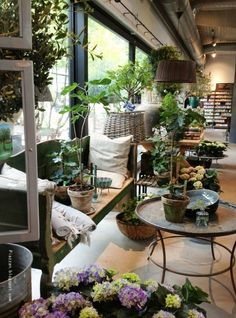 zetas garden centre building - Google Search
