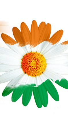 India Flag for Mobile Phone Wallpaper 03 of 17 - Happy Independence Day - HD Wallpapers Indian Independence Day Images, Independence Day Hd Wallpaper, Independence Day India, Cellphone Wallpaper, Mobile Wallpaper, Indian Flag Colors, Indian Flag Images, Indian Flag Wallpaper, Republic Day India