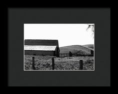 Out To Pasture Framed Print By Marnie Patchett