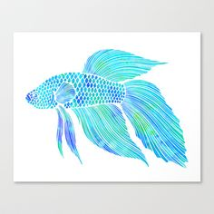Blue+Beta+Fish+-+ocean,+sea,+beach,+watercolor+Stretched+Canvas+by+Courtney+McFarland+-+$85.00