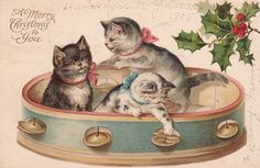 VINTAGE 1905 CHRISTMAS CARD - KITTENS IN TAMBOURINE