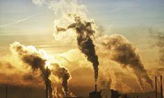 As bestas feras da poluição.