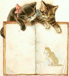 Vintage cats with book