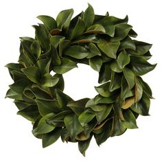 The Jane Seymour Botanicals Magnolia Leaf Wreath is a simple and realistic wreath of magnificent magnolia foliage. If you are looking for a touch of green to go with your decor, yet you want to maintain a touch of formality and sobriety, this wreath may be just the thing you are looking for. Quiet and unassuming, this wreath vastly increases the beauty of the door where you hang it or the place on which you use it as a centerpiece without drawing undue attention to it.<br/><br&#...