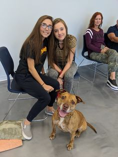 """Thanks to a generous grant from our friends at Dolly's Dream Fund, JHS was able to launch our first-ever """"Dolly's Dream School"""" for dogs at JHS. Shelter Dogs, Animal Shelter, Animal Rescue, Terrier Dogs, Terrier Mix, Humane Society Volunteer, Summer Camp Activities, New Sibling, German Shepherd Dogs"""