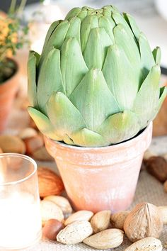 Artichoke in Terracotta Pot. Makes for a gorgeous Centerpiece