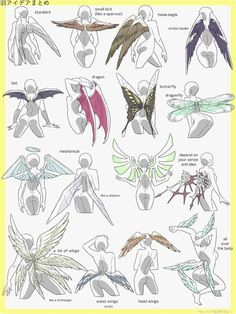 Drawing Tips Ravage wings much lololololololololololololol Drawing Base, Manga Drawing, Drawing Sketches, Art Drawings, Drawing Tips, Sketching, Human Drawing, Manga Art, Pencil Drawings