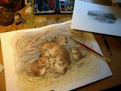 Petra Brown - Portfolio - Petra Brown, Children's Book Illustrator