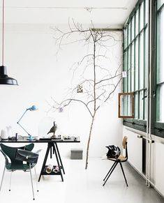like the tree branch idea to hang inspiration, and  the blue lamp.