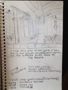 Out Your Window Nature Journal- Use a sketch and then some short bullet points with your observations.