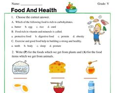 Health Class, Health Lessons, Science Lessons, Hindi Worksheets, Science Worksheets, 2nd Grade Reading Worksheets, Food Protection, Food C, Food For Digestion