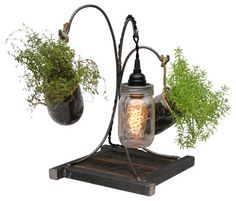 Life and Light Mason Jar Lamp and Planter - farmhouse - Indoor Pots And Planters - Wayne Works