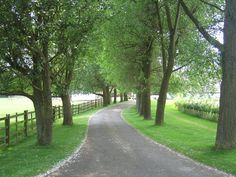 Driveways and entrances - www.myLusciousLife.com - Driveway_to_Nolands_Farm