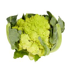 Romanesco: When you first see a head of romanesco you presume it it some novel hybrid of a vegetable, and it certainly has a sci-fi fantastical look about it. Actually it predates both broccoli and cauliflower and is an acid-green, fantastically whorled combination of both.    http://www.nigellissima.com/