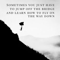 Sometimes you just have to jump off the bridge and learn to fly on the way down. thedailyquotes.com