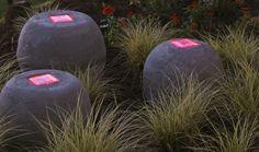 Sun Garden – Garden Solar Lights : Gardening : The Home Channel