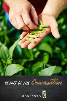 Be part of the conversation about food, where it comes from and how it becomes more accessible. #Monsanto