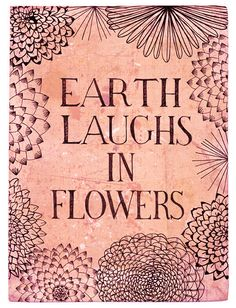 Earth laughs in flowers - Nature is BEAUTIFUL & we should definitely appreciate it more.