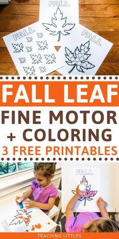 Try this fall activity with your toddler for developing fine motor skills using stickers, crayons, learning colors and counting with these free printables.