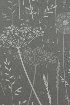SAMPLE // Paper Meadow in 'Charcoal' by Hannah Nunn // Dark Grey Charcoal Floral Tonal Botanical Dandelion Neutral Nature Woodland Wallpaper Wallpaper Samples, Of Wallpaper, Designer Wallpaper, Grey Floral Wallpaper, Charcoal Wallpaper, Dandelion Clock, Sample Paper, Textures Patterns, Backdrops