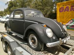 Just arrived. 1960 bug . Will back ride again in a few days