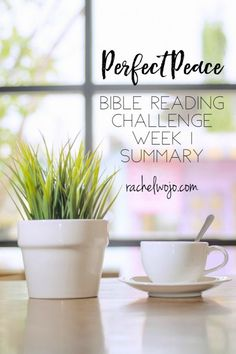 If transition feels like a peace snatcher in your life, the Perfect Peace Bible Reading Summary Week 1 will help! Bible Quotes About Peace, Free Indeed, Christian Facebook, God Will Provide, Perfect Peace, Bible Encouragement, Reading Challenge, Prayer Quotes, God Is Good