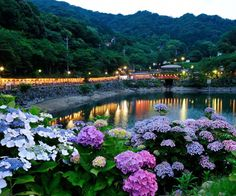 6 good things about Japan's rainy season   tsunagu Japan