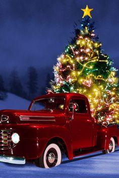 redneck christmas happy holidays christmas holidays merry christmas christmas tree cards christmas - Redneck Christmas Lights