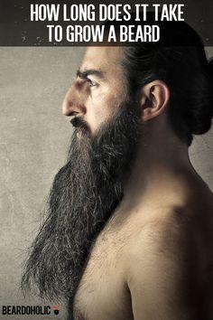 How Long Does it Take to Grow a Beard From beardoholic.com