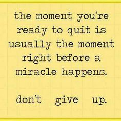 Never. Give. Up.