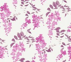 Wisteria Blossom Berry Plum (213743) - Sanderson Wallpapers - A stylised Wisteria Blossom design created with a loose, impressionistic style to give a lovely light- filled effect.  Shown in the berry purple and plum pink colourway.  Paste the wall. Please request sample for true colour match