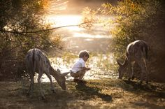The beauty of nature by Adrian Murray