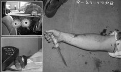 One hundred years of crime: Incredible forensic images dating back decades unearthed for the first time from secret LAPD archive Forensic Photography, Photography Career, Photography Themes, Types Of Photography, Forensic Files, Famous Murders, Major Crimes, Dating Coach, Portraits